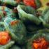 Orecchiette alla spirulina, crema di fave fresche, ricci di mare, pane fritto e menta